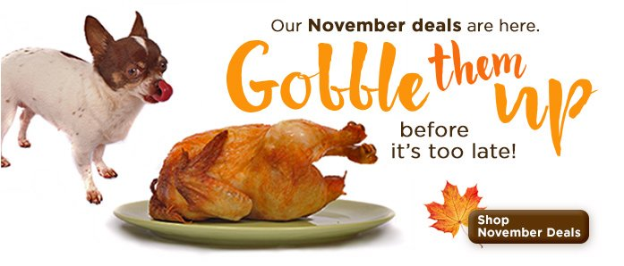 Our November Deals are here. Gobble them up before it's too late at www.OfficeZilla.com!
